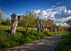 Chemin-des-Trognes-Maison-Botanique-Boursay©Laurent-Alvarez-Conseil-Departemental41--(10)