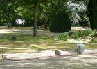HPA53-camping-municipal-zone-verte-1