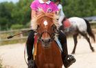centre-equestre-ambrieres-les-vallees-53-asc-1