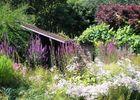 jardins-des-renaudies-colombiers-du-plessis-53-pcu-44