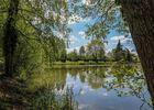 CH-Forest-View-Dorceau