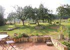 Les-Vignes-St-Fulgent-des-ormes