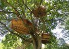 Cabanes dans les arbres de la Grande Noé - Moulicent