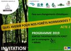 forets-normandes-2