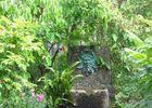 jardinlapetiterochelle-remalard-800-2