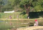 truitedespyrenees2-laubalagnas-HautesPyrenees