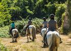 528145_balade_cheval