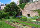 PCU-jardin-medieval-de-la-source (4)