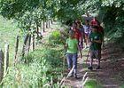 randonnee-pedestre-ambrieres-les-vallees-53-iti-1