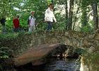 sentier-d-interpretation-arboretum-pontmain-53-iti-cp greboval (12)