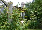BRARD Photo 17 jardin