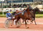 Hippodrome Lisieux Vue sur la course