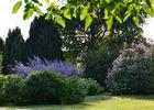 jardin-manou-percy-auge-cal