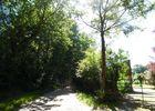 panorama-sur-le-bais-Montreuil-en-Auge4