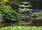 Parc botanique de Cornouaille