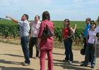 excursion dans le vignoble