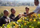 Ecole des Vins de Bourgogne dégustation dans les vignes