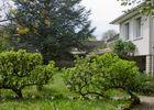 Le Grand Jardin en fleurs 2