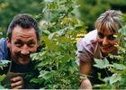 Ferme Fruirouge Sylvain et Isabelle OLIVIER dans les champs de cassis