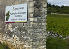 Vineatours Chevalier-Montrachet