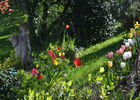 Fleurs et statue dans le jardin