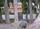 Villa Vanille (La)