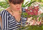 Orchidée Rose (L')