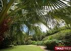 Jardin d'eden - Jardin d'Eden