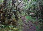 Réunion Ecotourisme