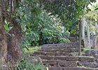 Jardin de la Maison d'Edith allée jacques - Jardin de la Maison d'Edith (Le)