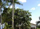 Maison des Gouverneurs (La)