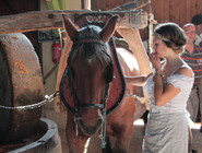 Pressée à l'ancienne - Crédit photo - La ferme d'Hotte (13).JPG