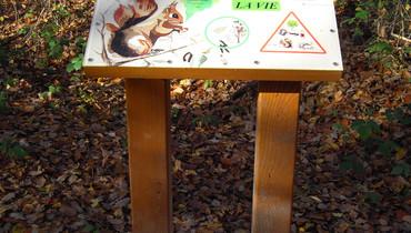 Sentier de l'écureuil5.jpg
