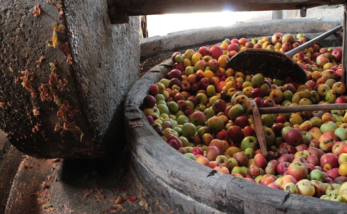 Crédit photo - La ferme d'Hotte (9).JPG