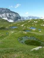 """Sortie Natura 2000 """"Visite du cirque de Troumouse à travers ses richesses naturelles et culturelles"""""""