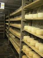 Fabrication traditionnelle de la tomme des Pyrénées