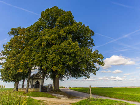 De Open Monumentendagen - Circuit - Ontdek de parel van het Parc Naturel des Hauts-Pays
