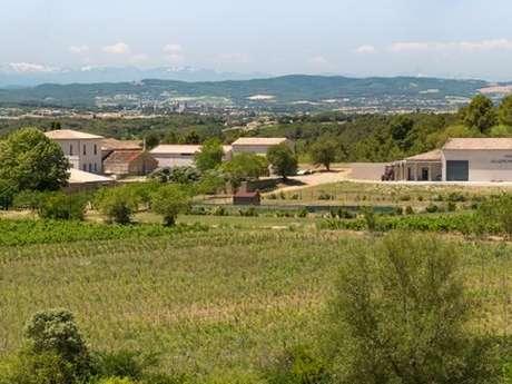 Wine Tasting - Domaine Villepeyroux