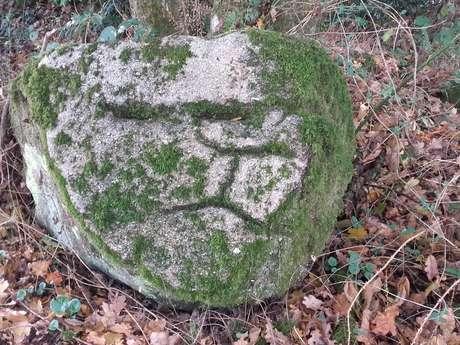 Mauléon - Les rochers gravés des Vaux
