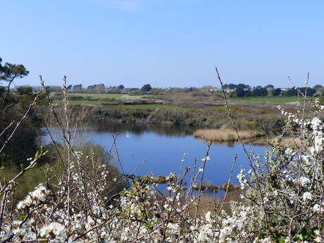 Circuit de l'étang de Trunvel