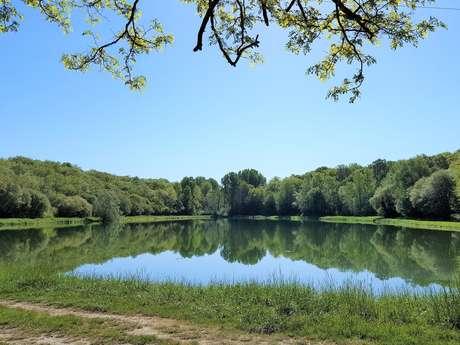 Boucle des étangs Saint-Genies
