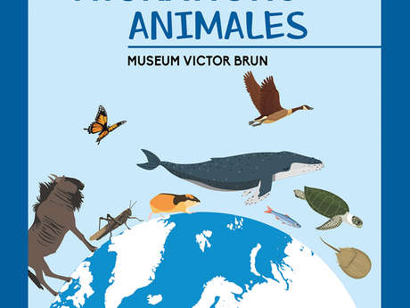 Les Migrations Animales #exposition