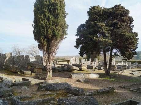 Visite guidée du patrimoine archéologique de Civaux
