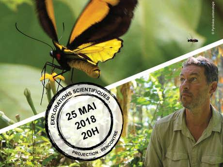 Projection & débat / Sur la piste des papillons géants