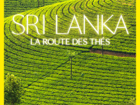 Sri Lanka - the road of teas