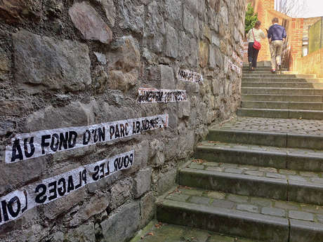 Visite guidée: Balade Mons littéraire