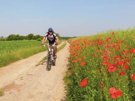 Cycle route: Mons, a tribute to 1914-1918