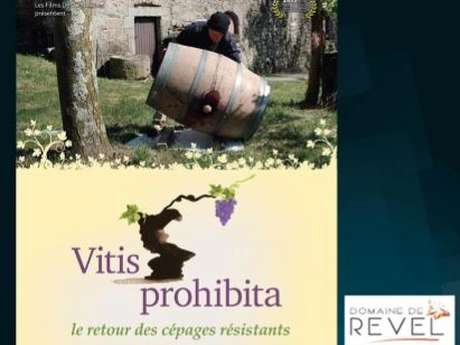 Projection & débat Vitis Prohibita