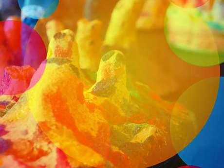 Exposition arts plastiques Nymphéas