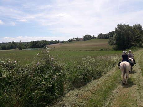 Circuit en Quercy Blanc - 5 jours à cheval